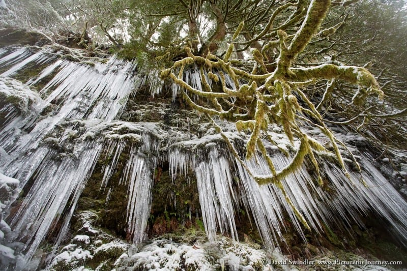 Hanging Icicles in the Gorge