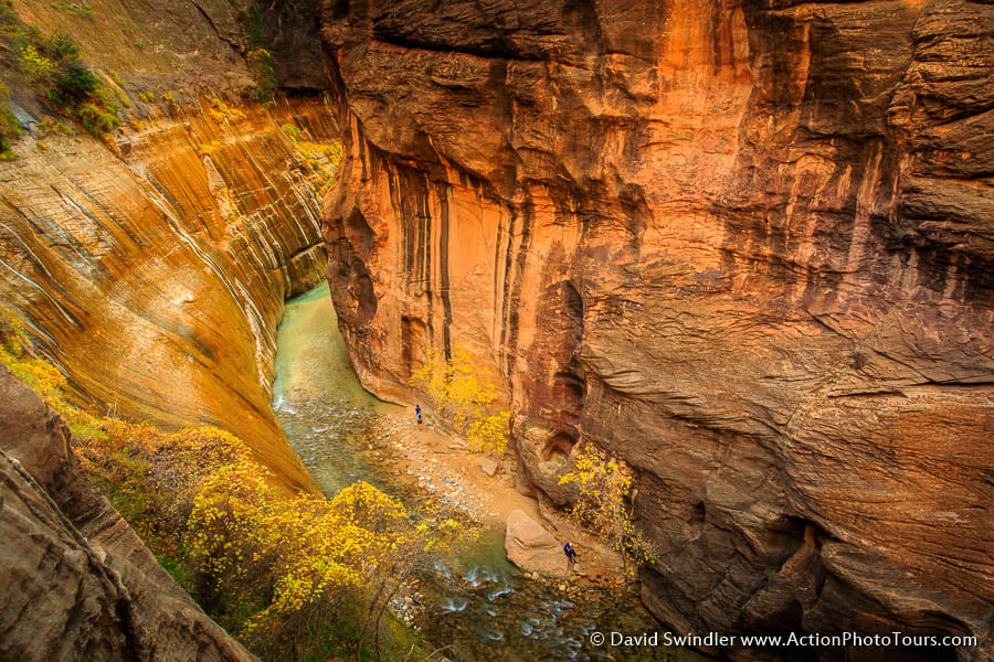 Zion Narrows From Above
