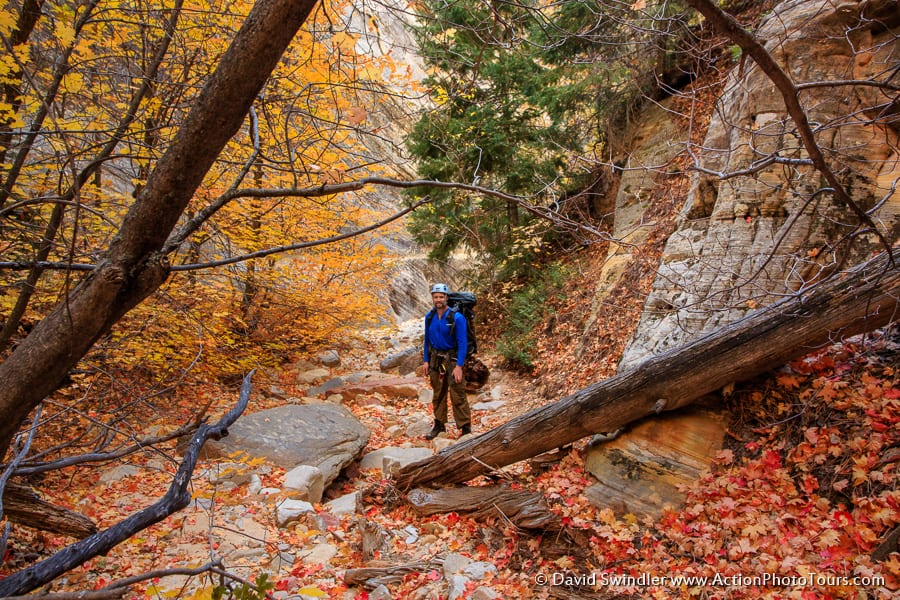 Mystery Canyon Fall Color