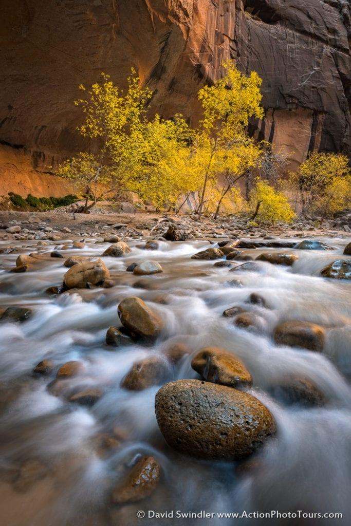 Zion Narrows Autumn
