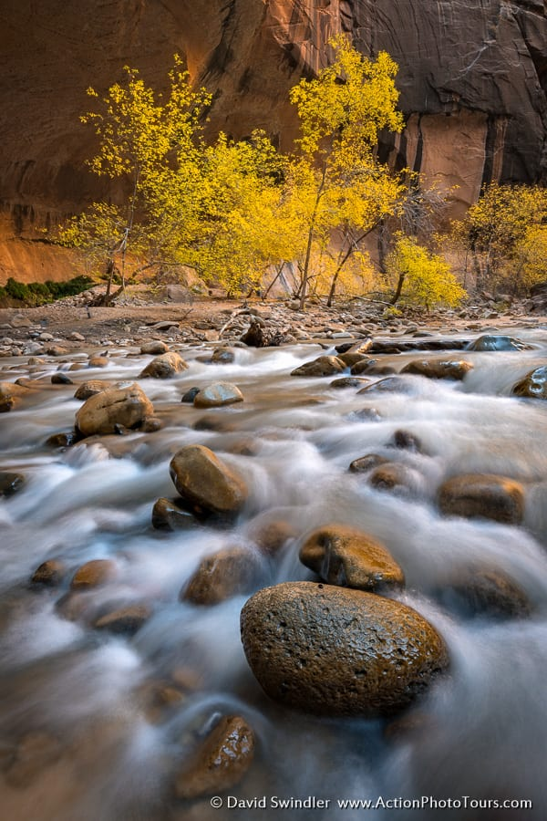 Fall Colors in the Zion Narrows