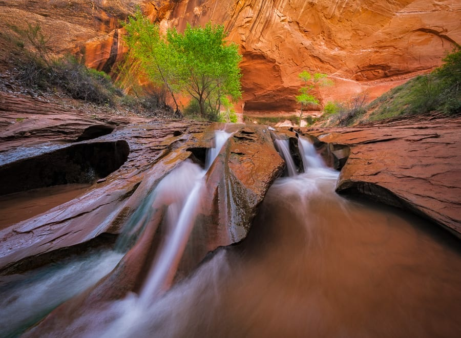 Happy Friday!  Here's a recent image from an outing to Coyote Gulch.  This is one of my favorite spots in the canyon and I enjoyed using my ultra-wide angle lens to acheive a new perspective on these falls. No focus-stacking needed - I was able to nail the hyperfocal distance.
