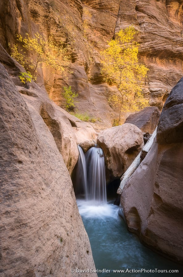 Zion Canyons Fall Color in Southern Utah