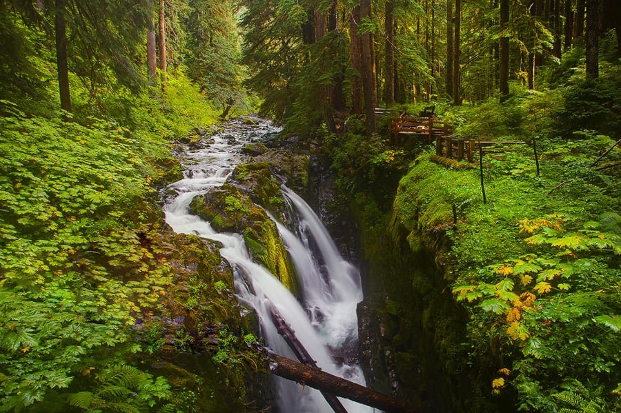 Olympic National Park Photo Workshop