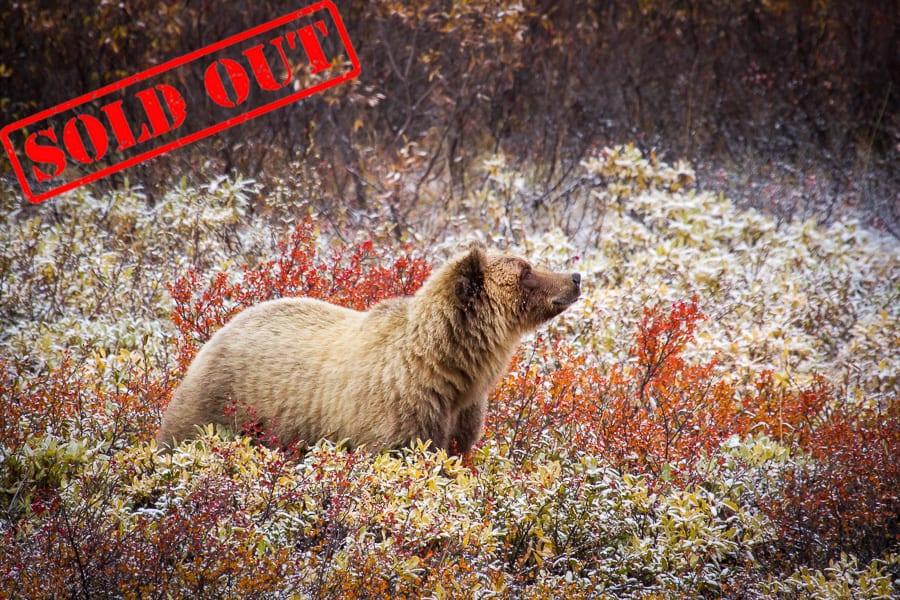 Alaska Sold Out