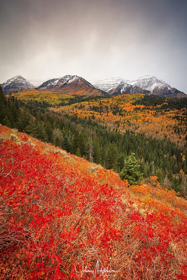 Fall Snow on TimpWMapt copy