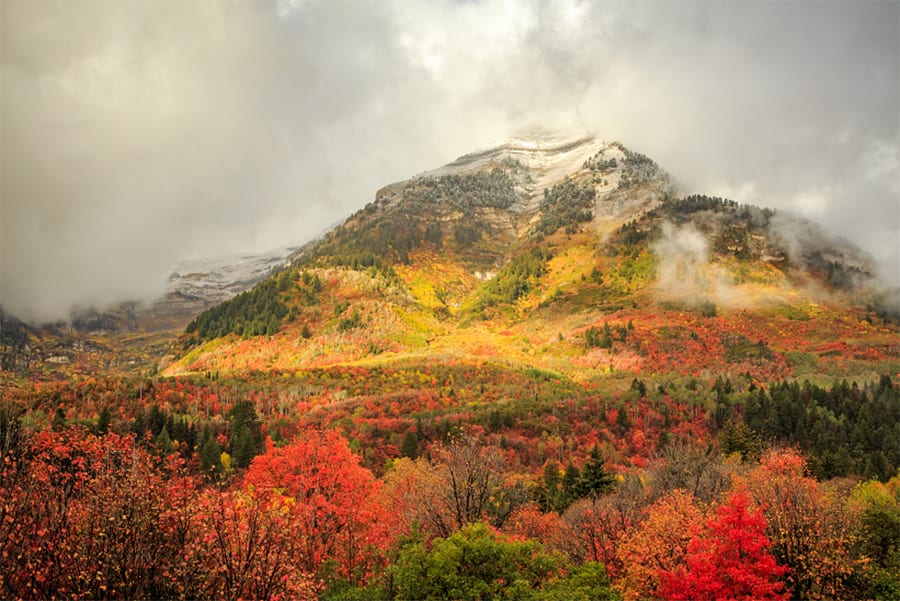 Fall color above Sundance, Provo, Utah.