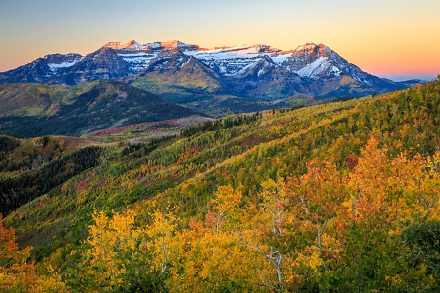 Fall color timp sunrise.