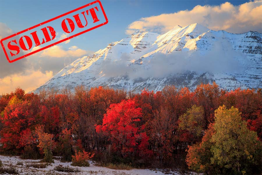Northern Utah Sold Out