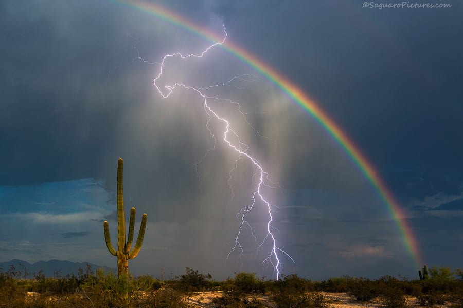 Storm Chasing Saguaro Lightning Rainbow