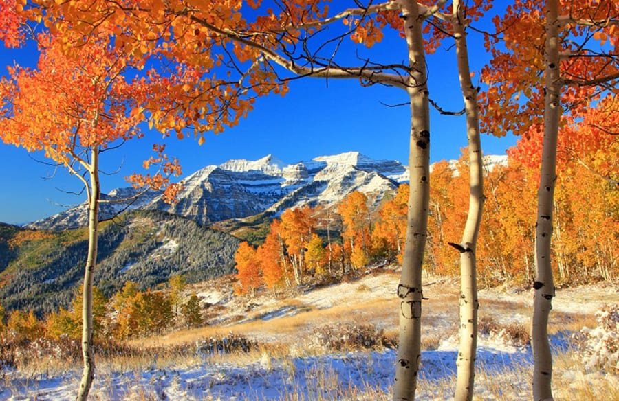 Northern Utah Fall Color Photo Workshop Wasatch Uinta