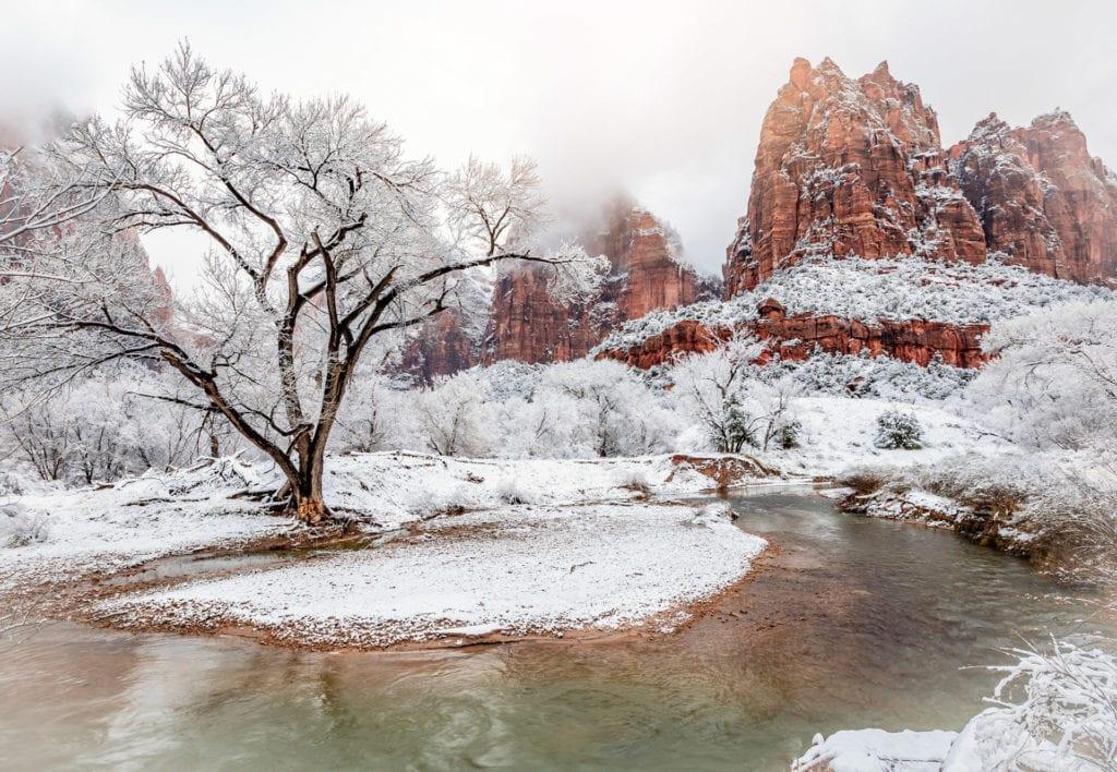 Snowy Zion Canyon Marci Saaijenga