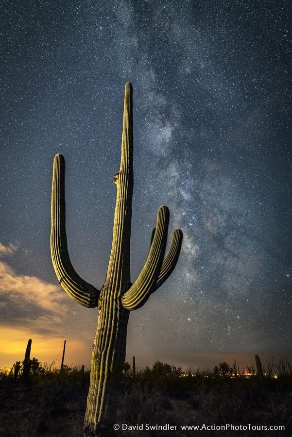 Saguaro Cactus Milky Way