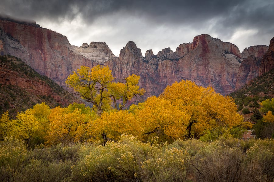 Towers of the Virgin Fall Autumn Zion Photo Workshop