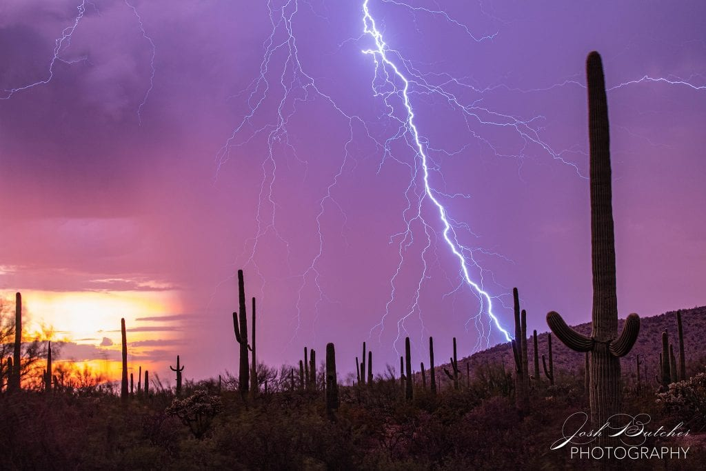 Josh Butcher Storms and Saguaros