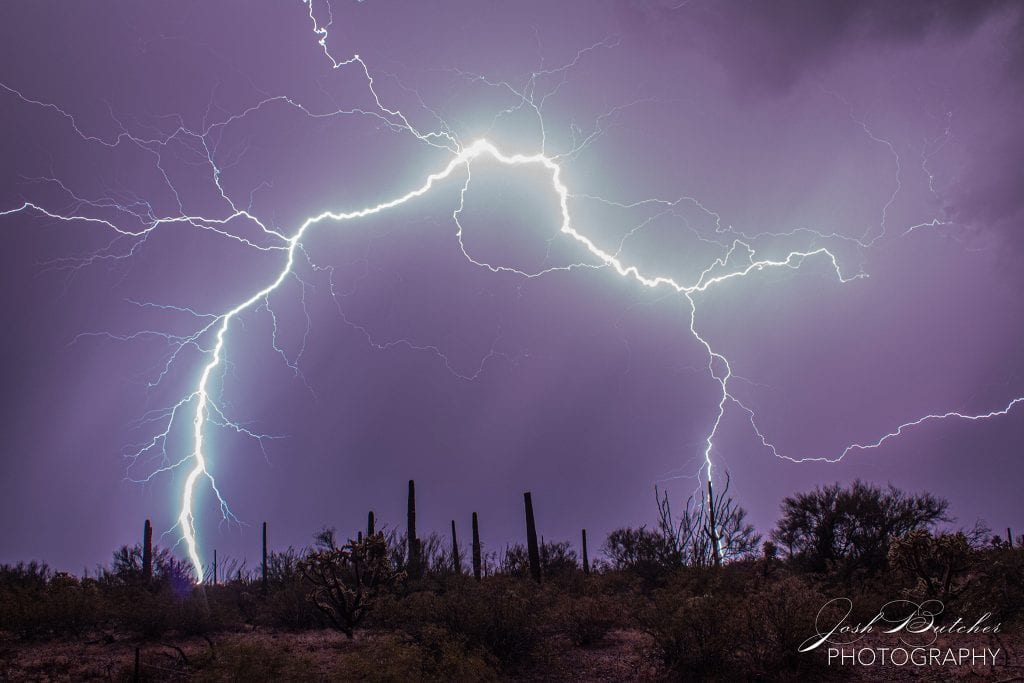 Lightning over saguaros