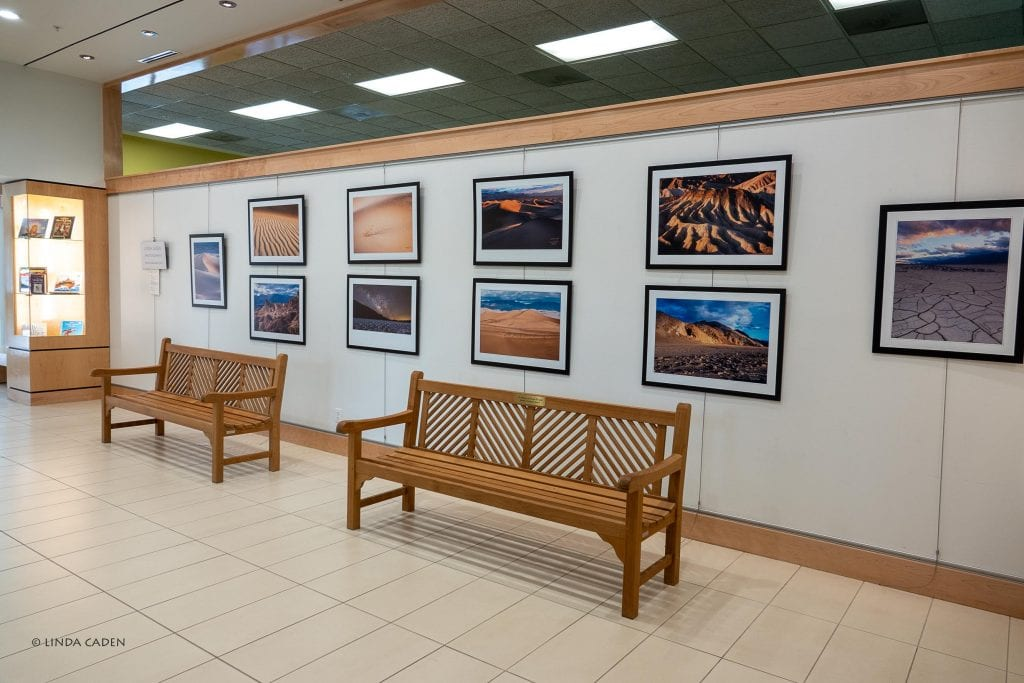 Linda Caden's Work on Display at Her Local Library