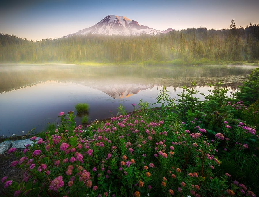 Mount Rainier Wildflowers Photo Workshop