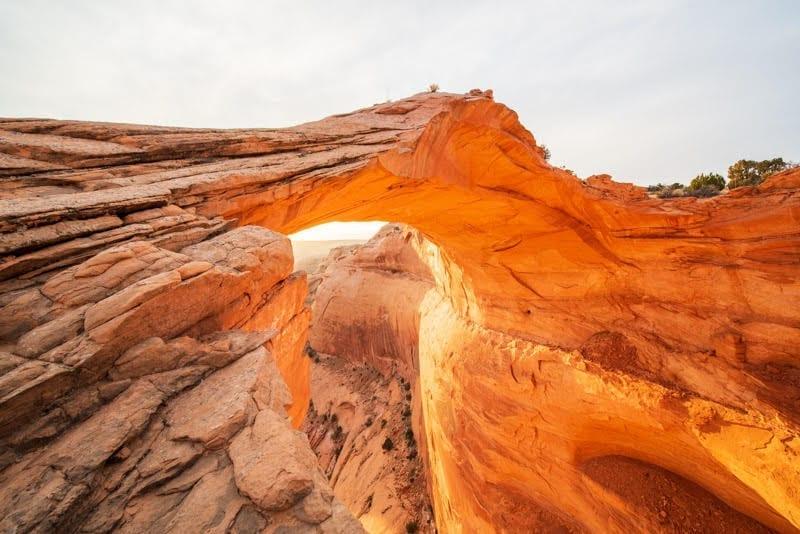 Eggshell Arch