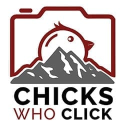 Chicks Who Click Logo 250px