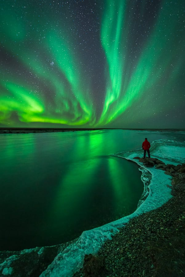 Northern Lights Aurora Borealis Arctic Wildlife and Landscapes Photo Workshop