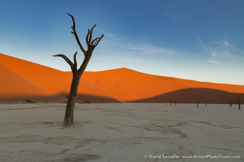 Focal length and perspective in landscape photography namibia trees