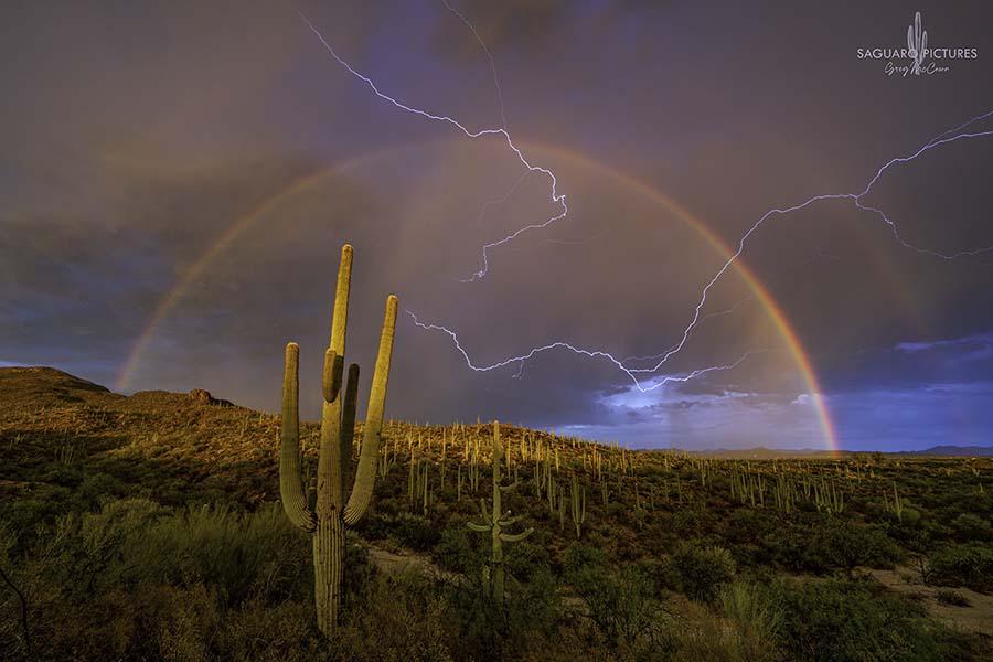 Saguaro Lightning - Greg McCown