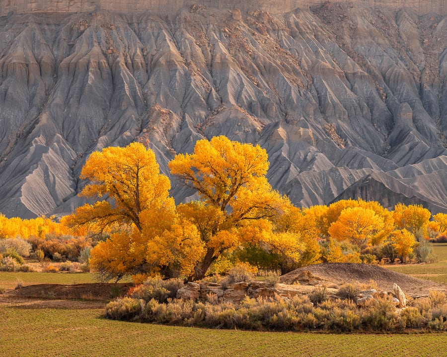 Utah Badlands Fall Colors