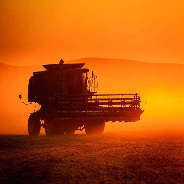 Harvest Sunset in Palouse
