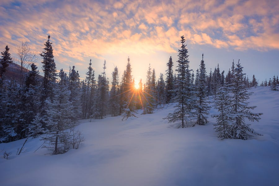 Alaska Aurora Borealis Photo Workshop Northern Lights Winter