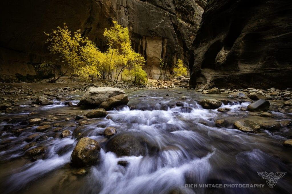 Fall in Zion - A.J. Rich
