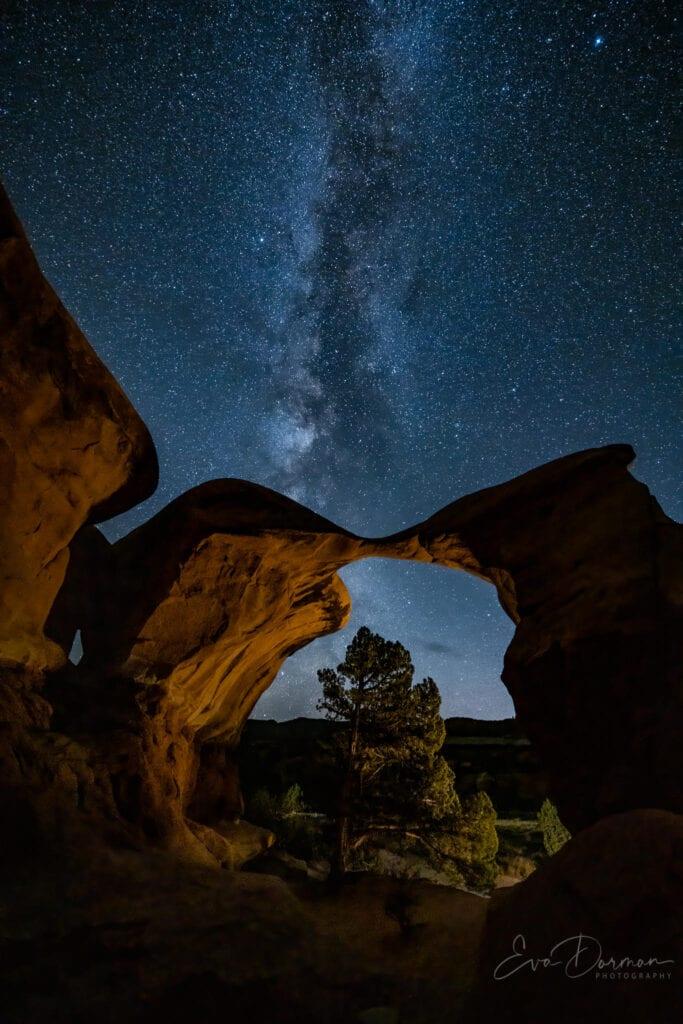 Devil's Garden Milky Way - Eva Dorman
