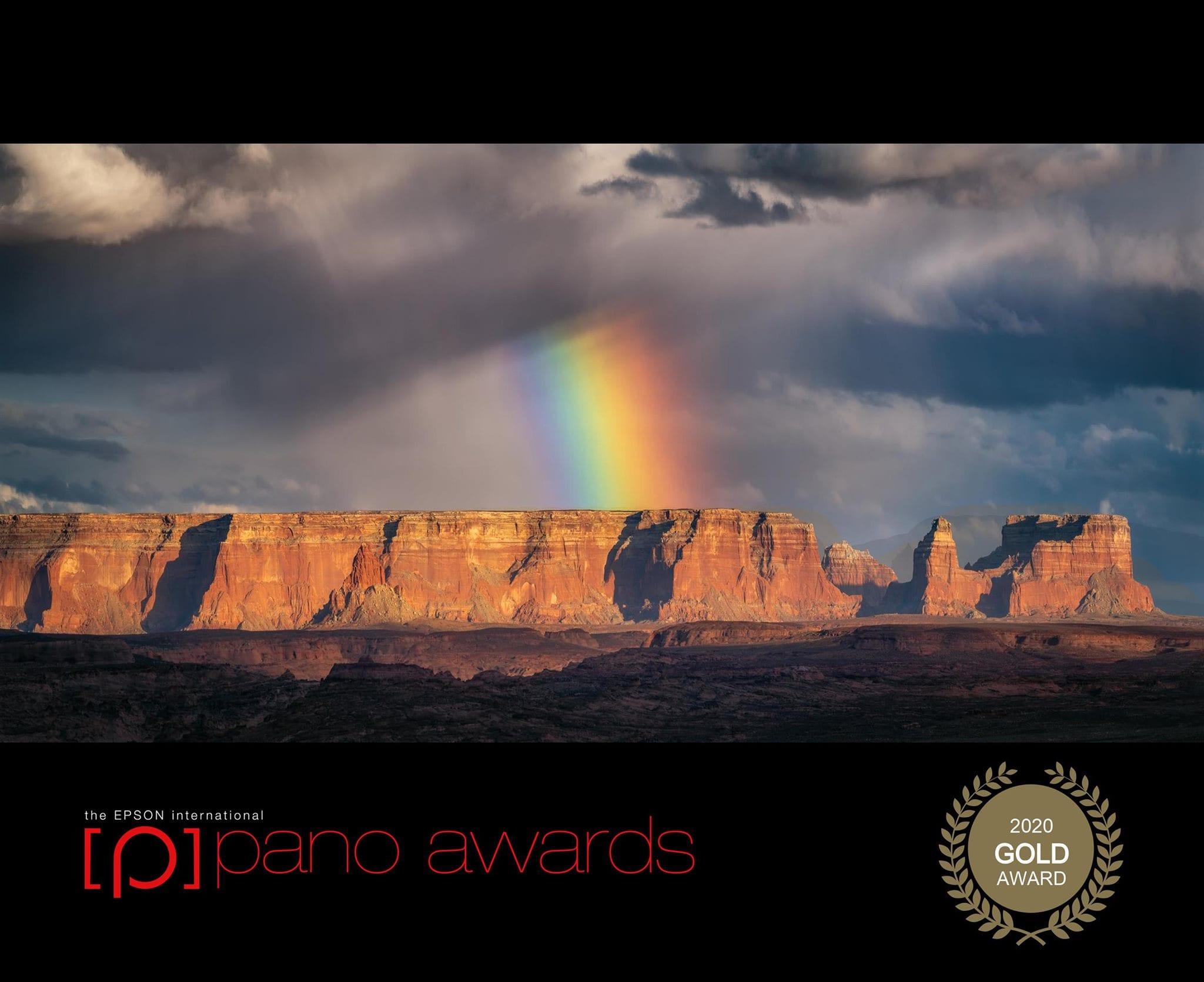 Epson Pano Gold Award