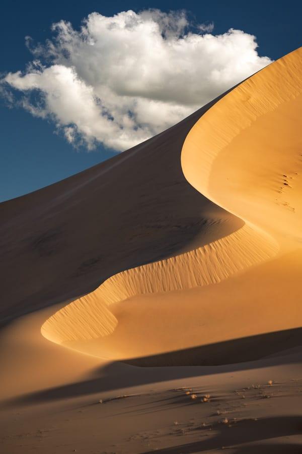 Death Valley Photo Workshop Sand Dunes Curves