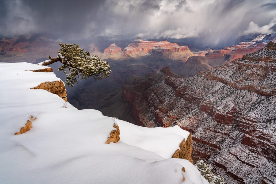 Winter in the Desert Photo Workshop