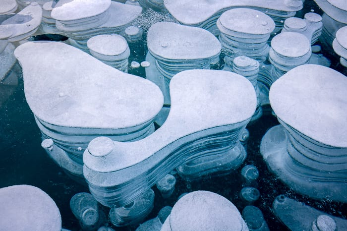 Happy first day of winter! Here's a more abstract shot of the ice bubbles out on Abraham Lake. I was fascinated by the different shapes they would maintain as they bubbled towards the surface.