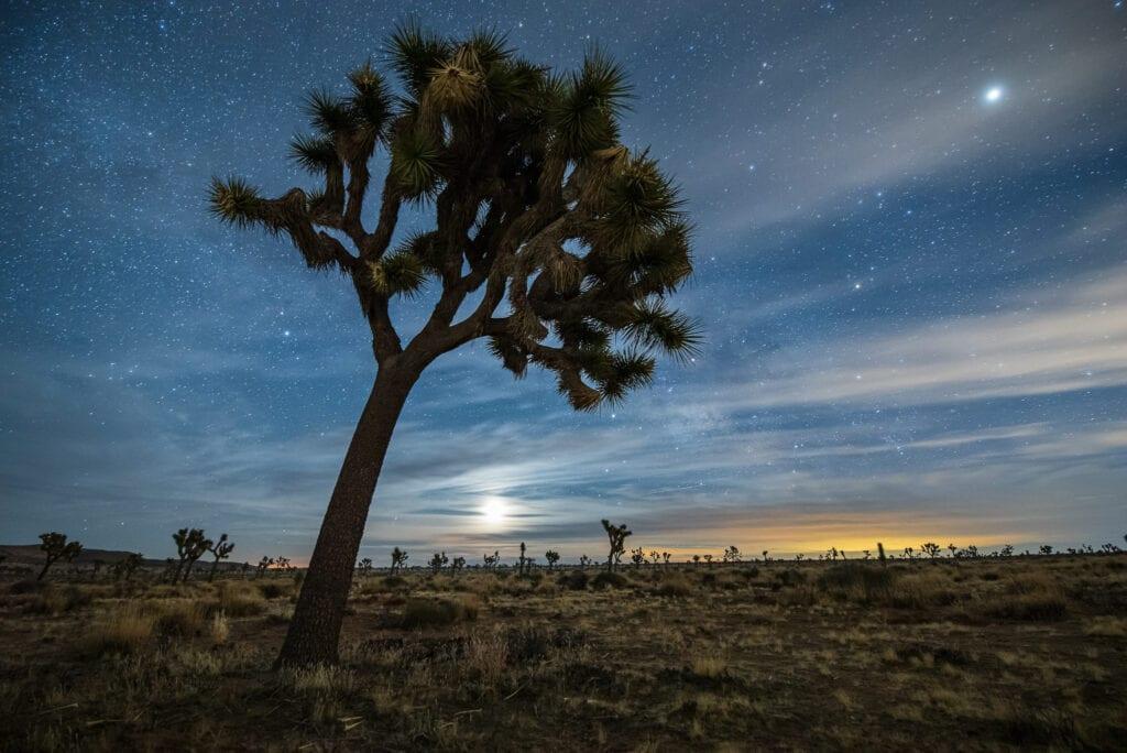 best camera for landscape photography pentax