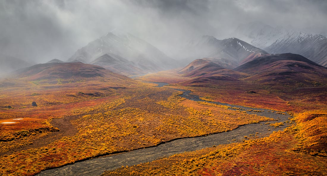 Alaska Autumn Photography Workshop Denali