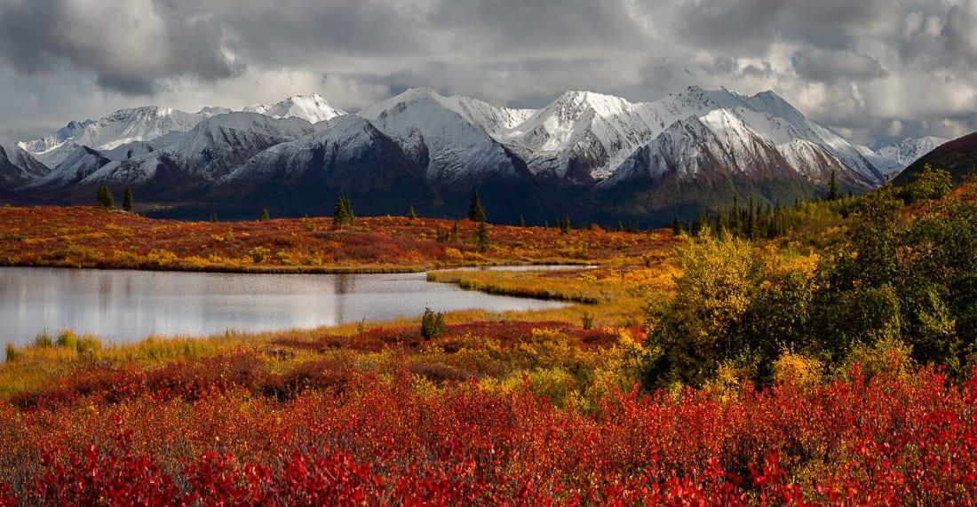 Alaska Fall Photo Workshop Denali