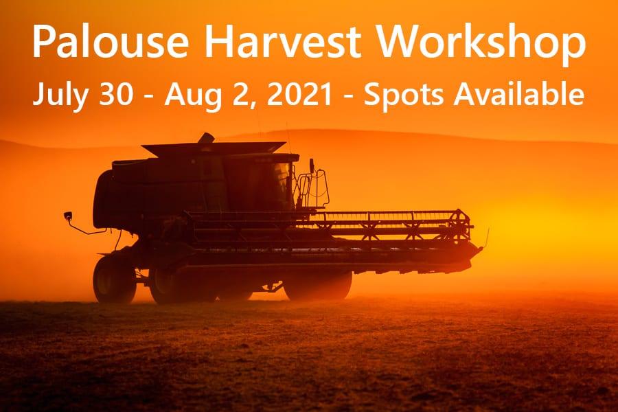 Late Day Harvest, Washington